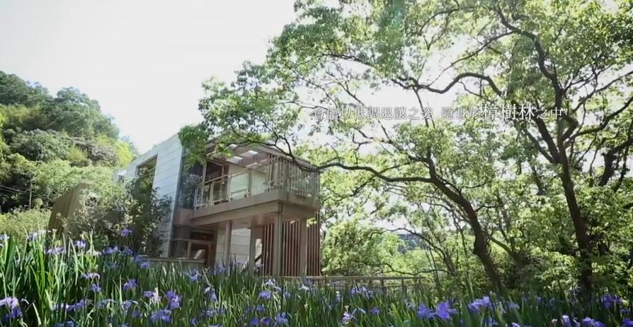 地产茶道书本 休闲会馆 自然风景林间小道高清宣传片实拍视频素材