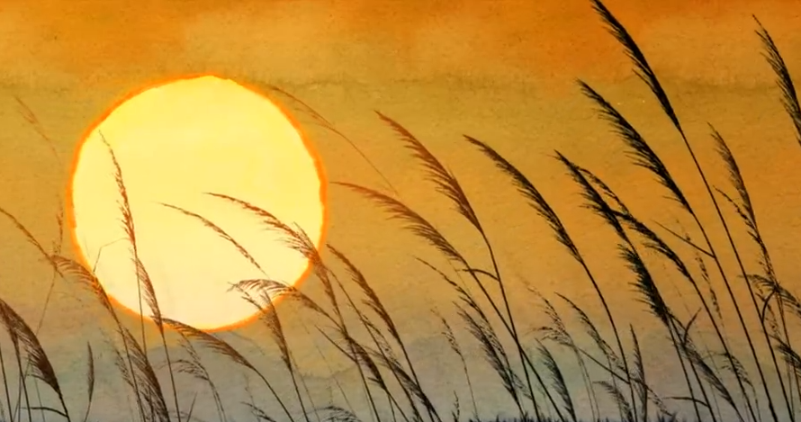 悲壮落日夕阳野草栅栏 金色斜阳伤感落幕夕阳西下 高清视频素材
