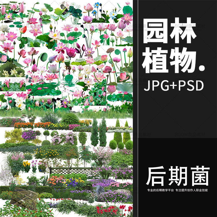 灌木绿篱设计PS图片公园花丛PSD素材后期绿化图片超清景观图