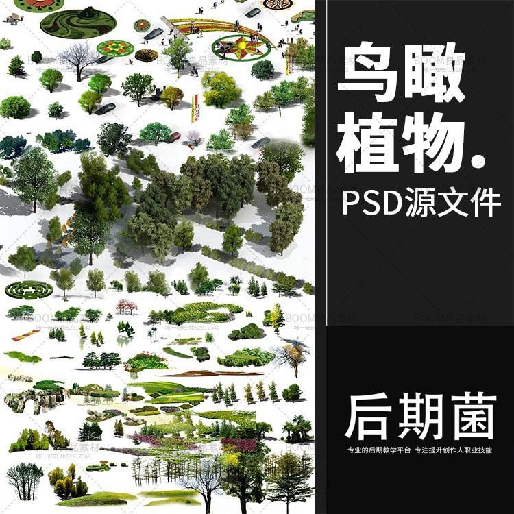 鸟瞰植物树psd分层素材景观园林规划设计ps后期效果图源文件