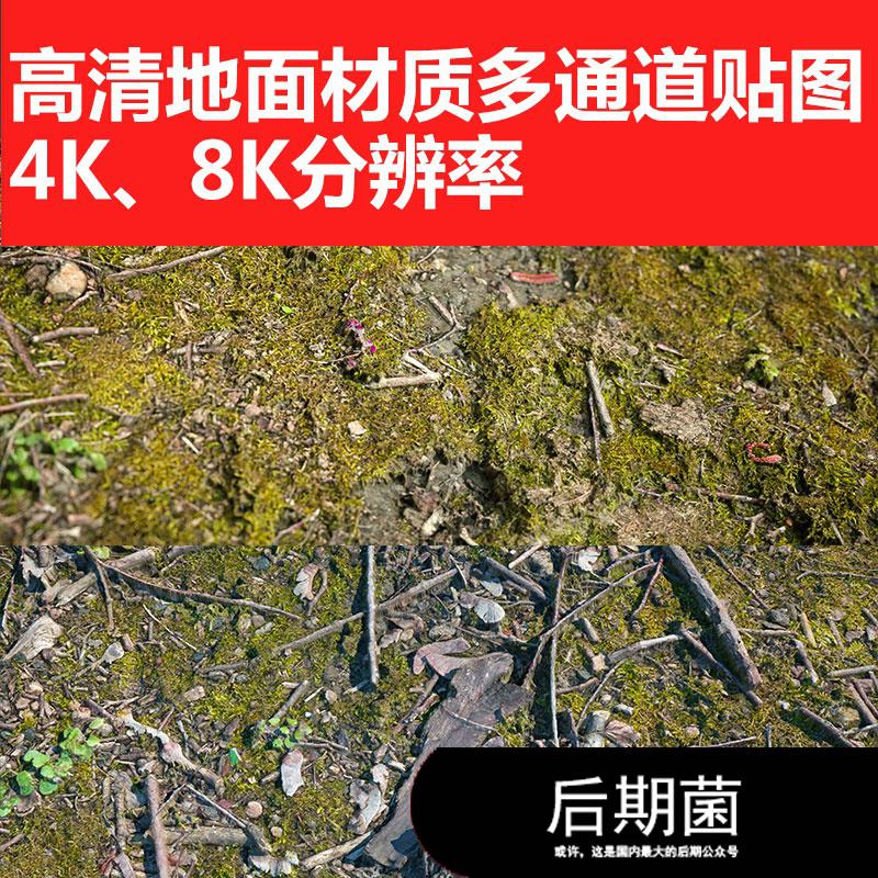 C4D 8K 5K高清土地水坑草地青苔地面枯枝多通道贴图材质三维