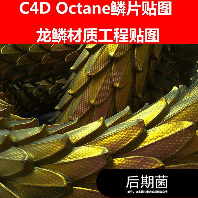 C4D Octane鳞片海洋动物金龙龙鳞金色材质工程贴图三维素材