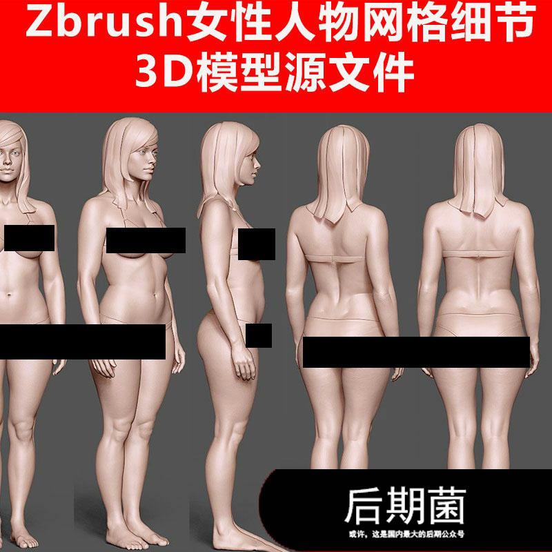 Zbrush 3D C4D zlt obj 女性人物模特网红精细模型三维素材
