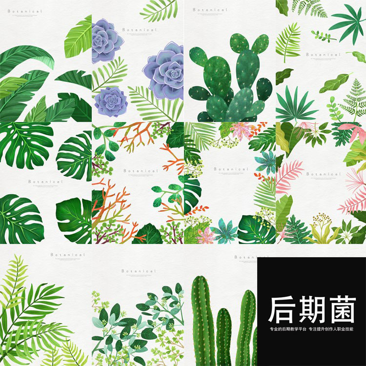 春天清新绿色热带植物树叶仙人掌棕榈图案背景海报PSD设计素材