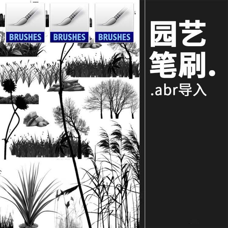 花草树木等植物石头笔刷平面树草本植物景观涂鸦PS笔刷PS设计素材